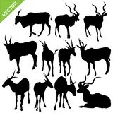 Bull silhouettes vector Royalty Free Stock Images