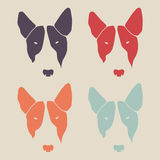 Set of bull terrier face. Dog head. Stock Photo