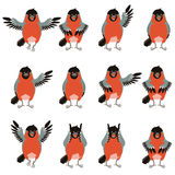 Set of bullfinches flat icons. Vector image of the Set of flat icons of bullfinches royalty free illustration