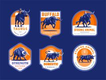 Set of bulls and buffalo in different poses. stock illustration