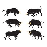 Set of bulls silhouettes in different positions. Vector. Set of bulls silhouettes in different positions. Vector collection royalty free illustration