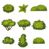 Set of bushes in cartoon style for decoration on your works, grass in cartoon style, green plants, vector