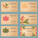 Set of business card. With colored maple leaf isolated on a Grey background vector illustration