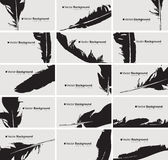 Set of business cards with a bird feather Royalty Free Stock Photos