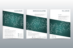 Set of business templates for brochure, flyer, cover magazine in A4 size. Structure molecule of DNA and neurons. Geometric abstract background. Medicine Royalty Free Stock Photography