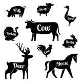 Set of butchery logotype templates. Cartoon farm animals with sample text. Retro styled toy farm animals black Stock Photo