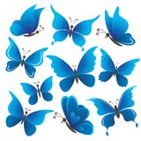 Set butterflies Stock Photography