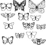 Set of butterflies Royalty Free Stock Image