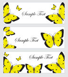 Set butterflies banner. Banner template with butterflies. Colored butterfly banner. Vector illustration Royalty Free Stock Photos
