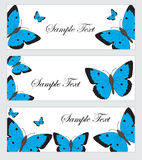Set butterflies banner. Banner template with butterflies. Colored butterfly banner. Vector illustration Stock Photography