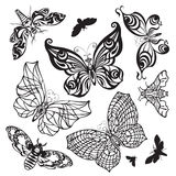 Set of butterflies. Set of beautiful butterflies on a white background Stock Images