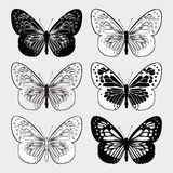 Set of butterflies black and white, hand-drawing. Vector illustr Stock Image