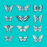 Set of Butterflies Decorative Isolated Silhouettes Royalty Free Stock Photography