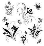 Set with butterflies and flower patterns Royalty Free Stock Photos