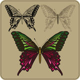 Set of butterflies, hand-drawing. Vector illustration Royalty Free Stock Images