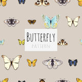 Set of butterflies with space for text Royalty Free Stock Photos