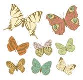 Set of butterflies Stock Photo