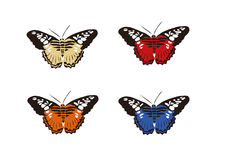 Set of butterflies royalty free illustration
