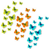 Set butterflies on white background. Colour butterflies on white background Stock Photography