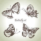 Set of butterfly. Hand drawn illustrations Royalty Free Stock Photo