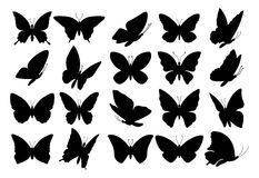 Set of butterfly silhouettes Royalty Free Stock Photos