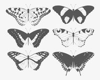 Set of butterfly silhouettes Stock Photos