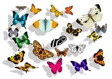 Set of butterflys Stock Images