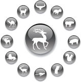 Set buttons - 159_A. Animals. Silhouettes of animals from all parts of the world for your design or business Stock Photos
