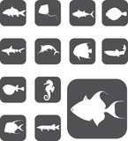 Set buttons - 22_Z. Fish. Set  buttons - 22_Z. Fish. Set of 13 round vector buttons for web Royalty Free Stock Images