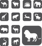 Set buttons - 25_Z. Animals. Set of 13 round vector buttons for web Stock Photo