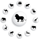 Set buttons 25B. Animals. Set of 13 round vector buttons for web Stock Images