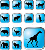Set buttons - 38_X. Animals. Set of 13 round vector buttons for web Stock Images