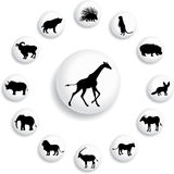 Set buttons 38B. Animals. Set of 13 round vector buttons for web Stock Photos
