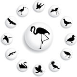 Set buttons - 39_B. Birds royalty free illustration