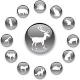 Set buttons - 54_A. Animals. Set of 13 round vector buttons for web Stock Photography