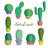 The set of cacti in pots. Stock Photos