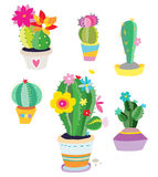 Set of Cactus Plants. Cacti with various shapes and colors created in a fun, stylized style Royalty Free Stock Photography