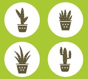 Set of cactus in pots simple print.  Icons Royalty Free Stock Image