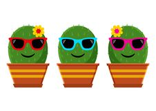 Set of cactus with sunglasses. Vector illustration vector illustration