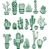 Set of Cactuses of different shapes Stock Photo