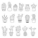 Set of 16 cactuses and succulents in flower pots. Home cactus plants with prickles and flowers. Exotic tropical. Set of 16 vector cactuses and succulents in Stock Photography