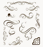Set of calligraphic elements vector illustration