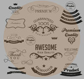 Set of calligraphic elements for design Royalty Free Stock Images