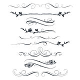 Set of calligraphic floral elements. Decorative roses silhouettes Stock Photo
