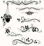 Set of calligraphic floral elements. Vector decorative twigs and flowers Royalty Free Stock Images