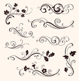 Set of calligraphic floral elements. Vector decorative twigs and flowers Royalty Free Stock Image