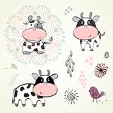 Set of calves Royalty Free Stock Photos
