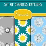Set Camomiles Patterns. Set of seamless patterns made from different camomiles. Vector illustration Stock Images