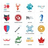 Set of canada leaf, handyman, breast cancer, skull and crossbones, drama, bike chain, boxing club, statement, 30 anniversary icons. Set Of 16 simple  icons such Royalty Free Stock Photography