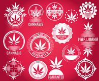 Set of cannabis and marijuana product symbol stamps  Royalty Free Stock Photos